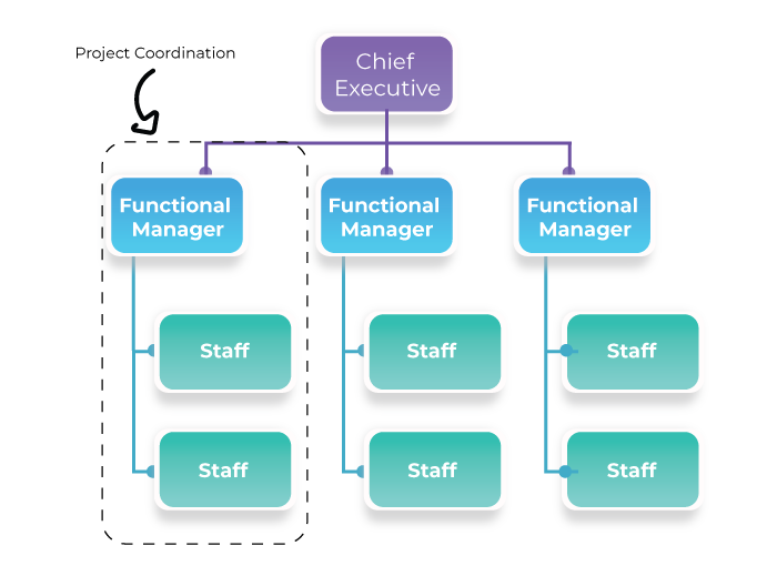 Projectized organization